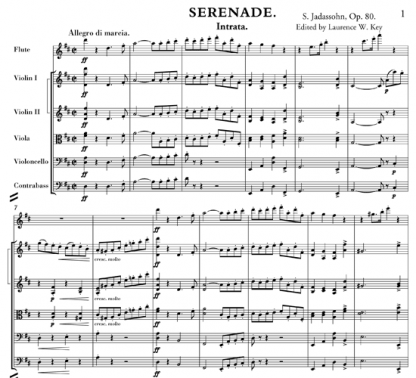 Serenade, Op 80 for flute and string orchestra | ScoreVivo