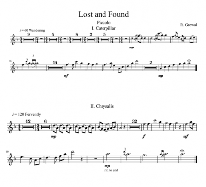 Lost and Found for flute sextet | ScoreVivo