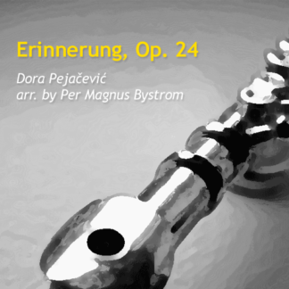 Erinnerung, Op. 24 by Pejacsevich & Bystrom